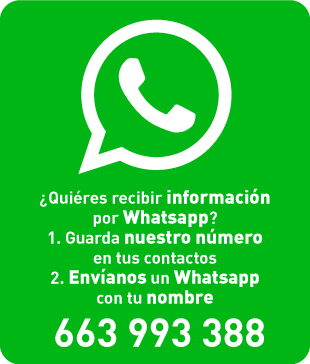 +34663993388